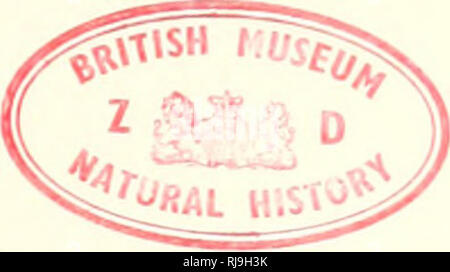 02b013f9adb9 Checklist of Palaearctic and Indian mammals 1758 to 1946. BRITISH MUSEUM  (NATURAL HISTORY .