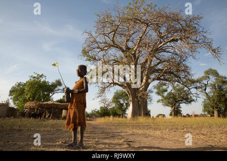 Baribsi village, Yako, Burkina Faso, 30th November 2016; Diane Kientega, 8, with a boabab sapling in front of the village baobab tree. - Stock Photo