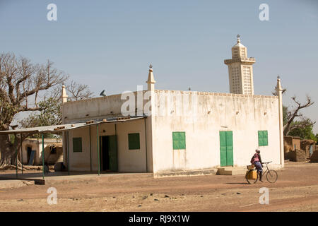 Yarsi village, Yako, 1st December 2016; A villager loded with water canisters cycles past  the local mosque. - Stock Photo