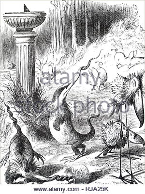 Illustration depicting a scene from Lewis Carroll's 'Through the Looking-Glass, and What Alice Found There' - Humpty Dumpty explains the poem Jabberwocky to Alice. Toves are like badgers with corkscrew noses, and make their nests under sundials. Illustrated John Tenniel (1820-1914) an English illustrator, graphic humourist, and political cartoonist. Dated 19th century - Stock Photo