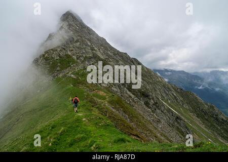 Österreich, Tirol, Stubaier Alpen, Neustift, Wanderer auf einem Grat im Wandergebiet des Elfermassivs in Stubai - Stock Photo