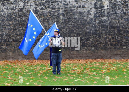Solitary protester carrying European Union flags opposite the British Parliament, protests against the Brexit vote after the 2016 Referendum in which the United Kingdom voted to leave the EU. - Stock Photo