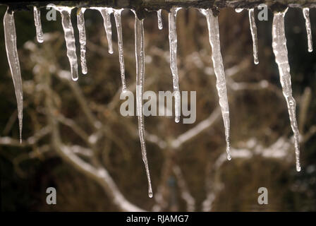Icicles melting from the edge of a roof - Stock Photo