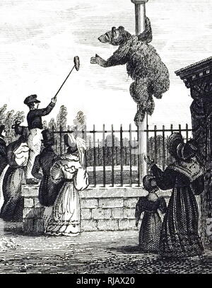 An engraving depicting the Bear Pit in the Royal Zoological Society's Gardens, Regent's Park, London. Dated 19th century - Stock Photo