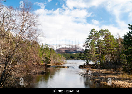 A view of Loch Morlich on a bright Spring day, with Mount Cairn Gorm in the background. Cairngorms National Park, Inverness-shire, Scotland. March. - Stock Photo