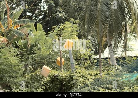 Yellow bins in the nature - Environmental conservation (Ari Atoll, Maldives) - Stock Photo
