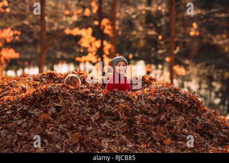 Two children sitting in the middle of a pile of leaves, United States