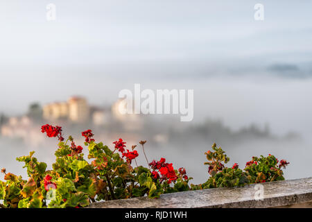Chiusi Scalo mist fog sunrise of houses buildings in Umbria, Italy near Tuscany with clouds covering blanketing town cityscape and focus on flowers ga - Stock Photo