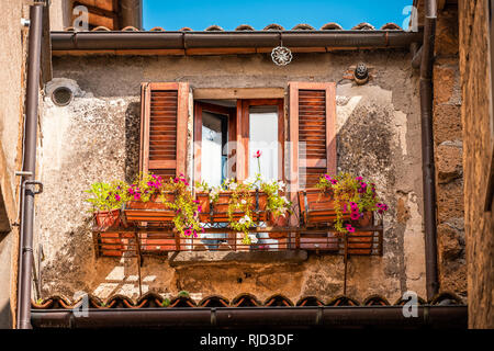 Orvieto, Italy town or village city in Umbria and closeup of open window shutters and pink purple malva flower decorations on sunny summer day nobody  - Stock Photo