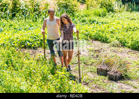 Happy young woman couple farmers with shovel and pitchfork harvesting holding flower many garlic bulbs plants in boxes in farm or garden smiling - Stock Photo