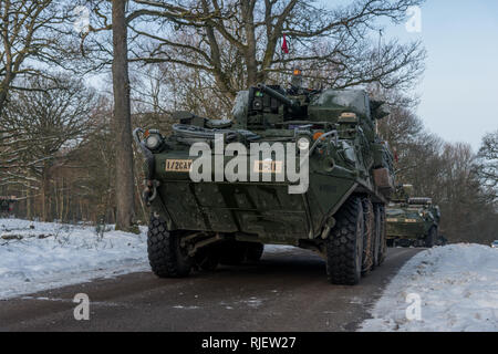Soldiers assigned to Bravo Troop,  1st Squadron, 2d Cavalry Regiment from  Vilseck, Germany, prepare for a live fire exercise on Range 35 at the  Baumholder Military Training Area, Baumholder, Germany, Feb. 4 , 2019. 1/2CR  is currently conducting Operation Kriegsadler to develop platoon-level  tactical proficiency, squadron support effectiveness and overall  organizational lethality. (U.S. Army photo by Erich Backes). - Stock Photo