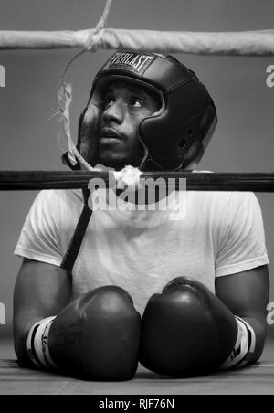 Seaman Cornelius Newell from USS Bataan keeps a close eye on a sparring session from ringside during the All-Navy Boxing Team mini-camp at Rockwell Hall Gym on board Naval Amphibious Base Little Creek on Oct. 11, 2008. The two-day camp was one of two held across the country by All-Navy Boxing. Participants selected from the mini-camps received invitations to attend the All-Navy Boxing Training Camp at Naval Base Ventura County in Port Hueneme, Calif., and compete for a spot on the 2009 All-Navy Boxing Team. - Stock Photo