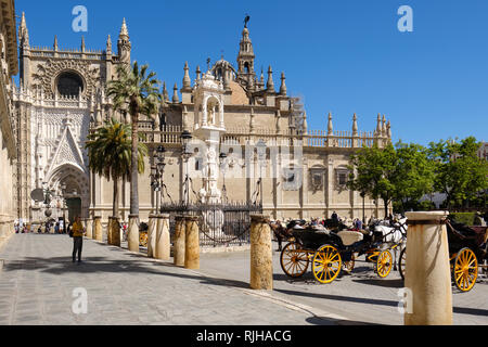 Seville Cathedral, Saint Mary of the See, from the Plaza del Triunfo, Sevilla, Andalucia, Spain, - Stock Photo