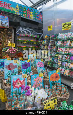Amsterdam, The Netherlands, October 10, 2018: Inside of market stall selling flower bulbs of famous holland tulips, amaryllis and other goods - Stock Photo