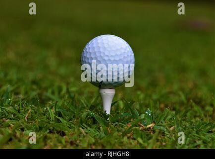 Golf ball on tee closeup detail - Stock Photo
