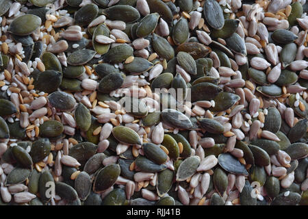 Mixed seeds, including pumpkin, sunflower, sesame and linseed. - Stock Photo