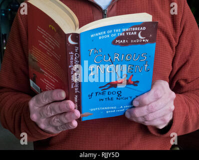 Caucasian Man Reading The Curious Incident of the Dog In The Night Time Paerback Book by Mark Haddon. Fictional Novel About Asperger's Syndrome - Stock Photo