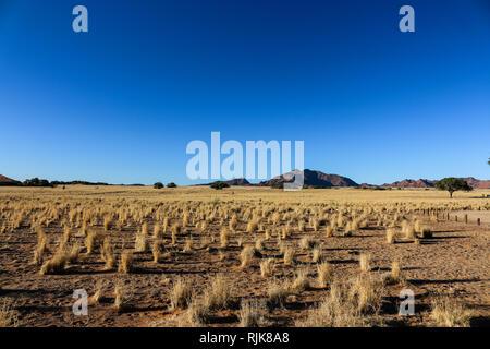 Aussicht vom Campingplatz in der Namib - Stock Photo