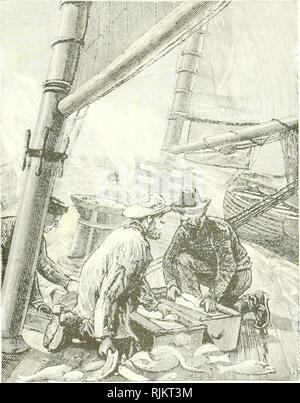 . The beam-trawl fishery of Great Britain. Trawls and trawling; Fisheries. Bull. U ' â Plate XIX.. Boxing the Fish.. Please note that these images are extracted from scanned page images that may have been digitally enhanced for readability - coloration and appearance of these illustrations may not perfectly resemble the original work.. Collins, Joseph William, 1839-1904. Washington, Govt. print. off. - Stock Photo