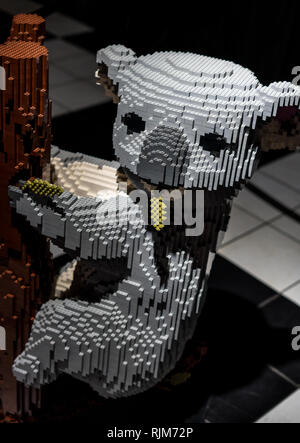 A beautiful brick built Lego Koala climbing a tree created by Ryan McNaught aka The Brickman - Stock Photo