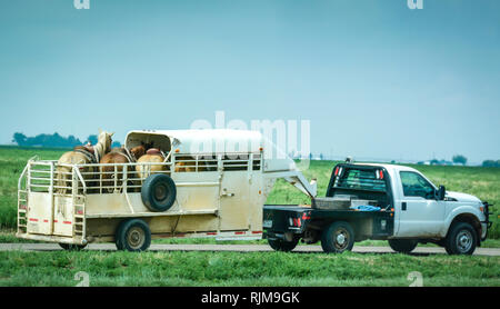 A truck pulling four saddled horses in horse trailer on frontage road alongside Route 66 in Texas - Stock Photo