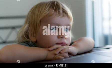 A nice photo of a adorable boy leaning on his hands on a table and looking at the distance. - Stock Photo