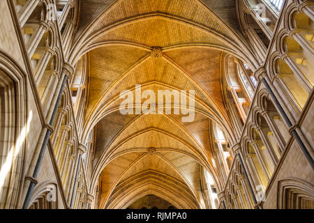 United Kingdom Great Britain England, London, South Bank, Southwark, Southwark Cathedral, Christian Anglican Diocese church, nave vaulted ceiling, Got - Stock Photo