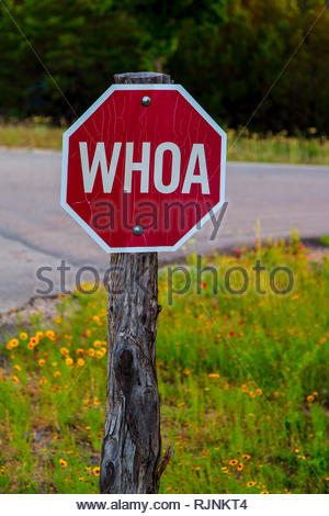 Old funny red road sign in Texas with Whoa instead of Stop - Stock Photo