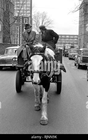 Rag and Bone man also called a Totter  collecting scrap metal and stuff to sell with his horse and cart, Notting Hill area of West London 1970. Collecting scrap for recycling re-cycling 1970s UK. HOMER SYKES - Stock Photo
