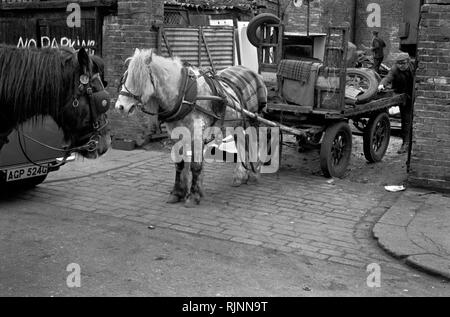 Rag and Bone men at the totters yard, unloading stuff collected during the day. Their horses were usually stabled at the yard. His horse and cart. Notting Hill area of West London 1970. Collecting scrap for recycling re-cycling 1970s UK. HOMER SYKES - Stock Photo