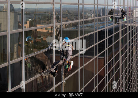Abseiling Window Cleaners. Cleaning Windows at The Crowne Plaza in Nottingham City Centre - Stock Photo