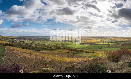 The Alsatian vineyard on the heights of Westhoffen, Bas-Rhin, France - Stock Photo