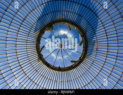 Glasgow Botanical Ceiling, Sunny Scotland - Stock Photo