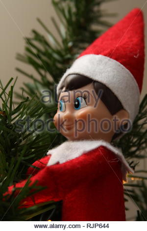 Elf on the Shelf hiding in a Christmas tree - Stock Photo