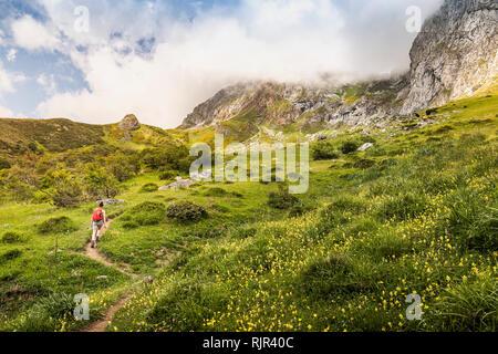 Hiker near Fuente De in national reserve Parque National de los Picos de Europa, Potes, Cantabria, Spain - Stock Photo