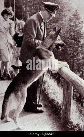 Blondi (1941 - 1945) was Adolf Hitler's German Shepherd, a gift as a puppy, from Martin Bormann in 1941. Blondi stayed with Hitler even after his move into the Fuhrerbunker located underneath the garden of the Reich Chancellery on 16 January 1945. According to Albert Speer, Hitler killed Blondi because he feared that the Russians would capture and torture her after overrunning the bunker. - Stock Photo