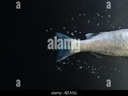 Fresh Raw Fish tail isolated on dark vintage background with ice from top view - Stock Photo