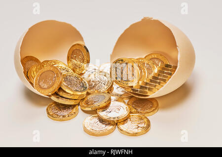 Nest Egg with Shinny Pound Coins - Stock Photo
