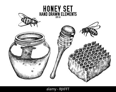 Vector collection of hand drawn black and white honey - Stock Photo