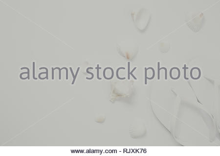 c41748101 Living coral theme - color of the year 2019 · White flip flops and sea  shells on the white background. Vacation concept. Stylish monochrome