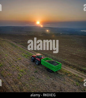 Aerial view on the combine working on the large sunflowers field - Stock Photo