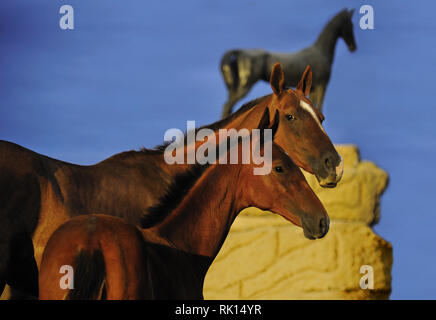 Two horses, mare and her foal, looking a the camera standing beside a horse metal statue on the background. Horizontal, portrait, sideways. - Stock Photo