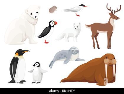 Set of arctic animals icon. Birds and mammals. Arctic animal, cartoon flat design. Vector illustration isolated on white background. - Stock Photo
