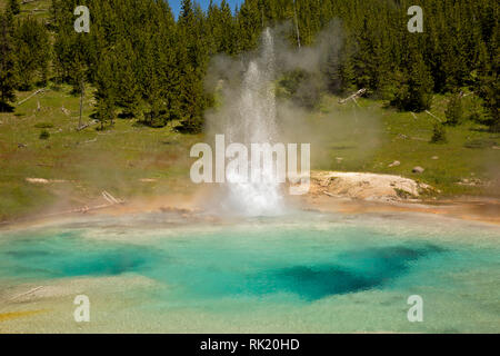 WY03396-00...WYOMING - Imperial Geyser located in the Midway Geyser Basin of Yellowstone National Park.
