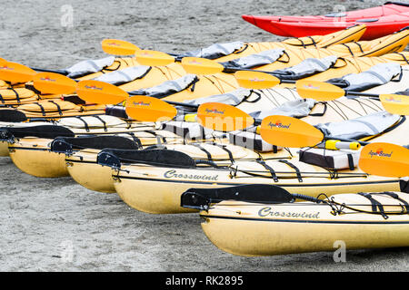 Rows of brightly coloured canoes floating on water - Stock Photo
