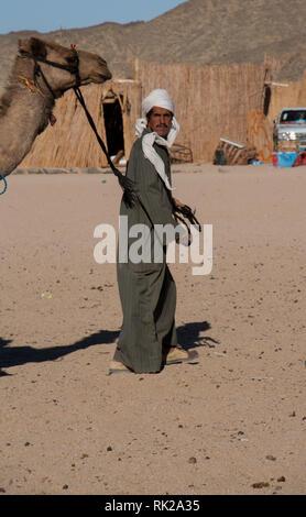 Bedouin man with camel in Egyptian desert - Stock Photo