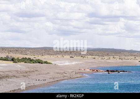 Punta Tombo beach day view, Patagonia landscape, Argentina - Stock Photo