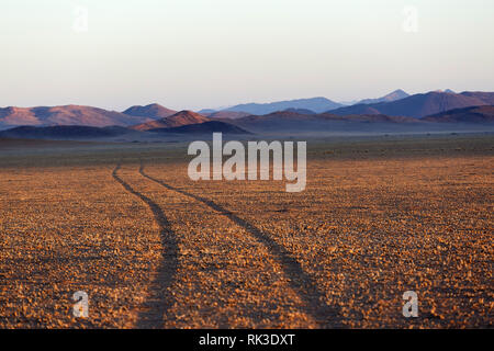 Sunset on the red Namib Desert with a sand path and bushes in southern  Namibia, Africa - Stock Photo