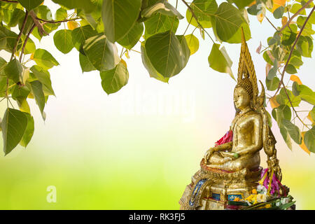 Buddha under Bodhi Leaf on nature background. Sacred Tree for Buddhist or Hindus and Beautiful natural blurred green background with sun rays. - Stock Photo