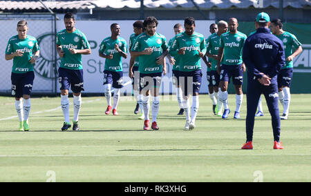 Sao Paulo, Brazil. 09th February, 2019.SÃO PAULO, SP - 09.02.2019: TREINO DO PALMEIRAS - of SE Palmeiras, during training, at the Football Academy. (Photo: Cesar Greco/Fotoarena) Credit: Foto Arena LTDA/Alamy Live News - Stock Photo
